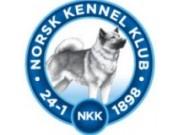Resultater og kritikkskjema - Norsk Kennel Klubb, Sandefjord-Melsomvik 05.06.2021