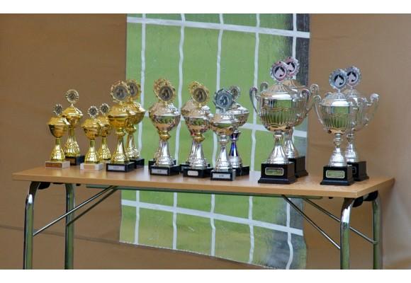 Årets utstillingsboxer - Nye kriterier fra og med 2015