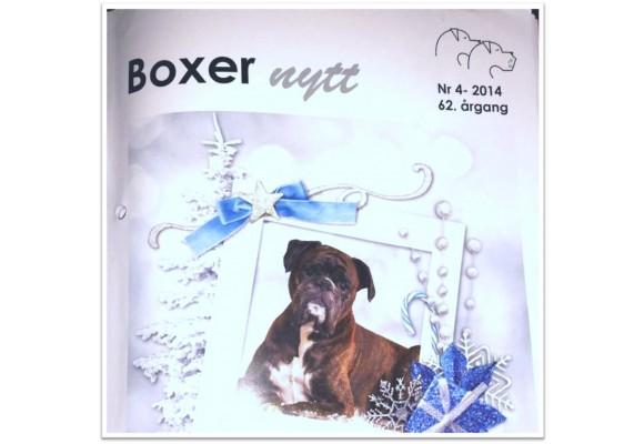 Boxernytt Nr 4 - 2014