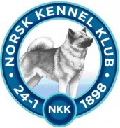 NKK-Logo best