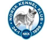 Norsk Kennel Klub har lagt ut en grei oversikt over hvordan de avleser røntgenbilder og setter HD-diagnose