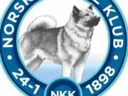 Forslag til fremtidig organisering av Norsk Kennel Klub - Høringsuttalelse