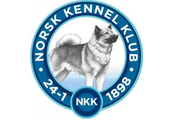Elektroniske kritikker på NKK's utstillinger