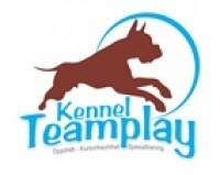 Teamplay logo