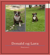 Donald og Lara 1
