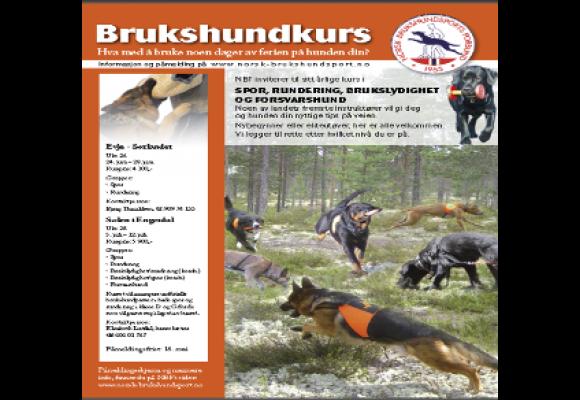 Norsk Brukshundsports Forbund har 3 ledige plasser på  Evjekurset, 24. – 28. juni.