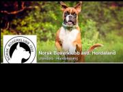 Oppdatert informasjon om lokalavdelingen i Hordaland