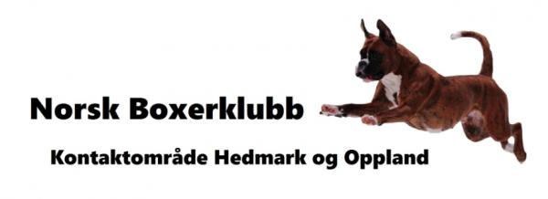 NBK Hedmark og Oppland