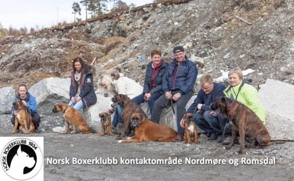 Nordmøre og Romsdal FB