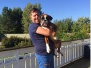 Brårud 17.09.2016 - Eidsvoll Hundeklulbb - Lydighet klasse 2
