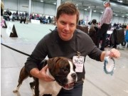 Lillestrøm 20.11.2016 - Dogs4All/Norsk Vinnerutstilling 2016 - NJV-16