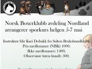 Norsk Boxerklubb avdeling Nordland arrangerer sporkurs 5. - 7. mai 2017
