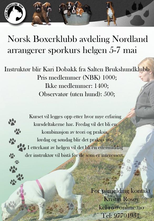 2017-mai-sporkurs-Nordland