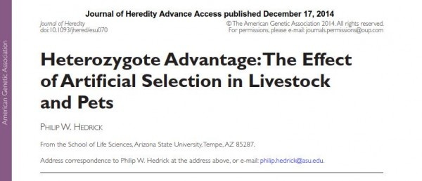 Heterozygote Advantage - The Effect of Artificial