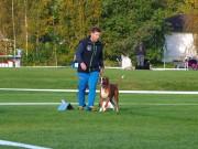 Moss 25.05.2017 - Moss og Omegn Hundeklubb - Rallylydighet klasse 3