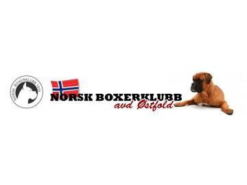 Forlenget frist til 15. juli for Norsk Boxerklubb avd. Østfold sin spesialutstilling på Evenrød, uten tillegg i pris