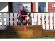Askim 21.05.2017 - Norsk Rottweilerklubb - RIK Ferdselsprøve BH