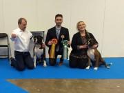 Göteborg, Sverige 04.01dato 2018 - MyDog 1 - Västra Kennelklubbens Nordic Dog Show - Nordisk Show Certificate BIR