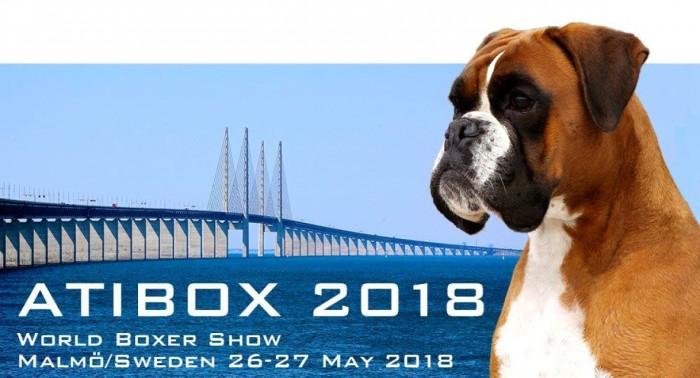 Atibox WBS 2018