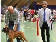 Letohallen, Dal 12.08.2018 - Cum Laude V Rusticana - BIR
