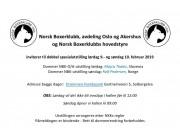 Norsk Boxerklubb inviterer til dobbeltutstilling 9.- og 10. februar 2019