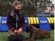 Stavanger 02.03.2019 - Rexob Lucky Talisman - Rallylydighet kl 1 - 1.premie 189 poeng