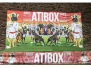 ATIBOX Generalforsamling 24. mai 2019 - Romania