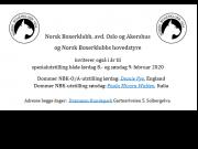 Norsk Boxerklubb inviterer også i 2020 til spesialutstilling i Drammen hundepark