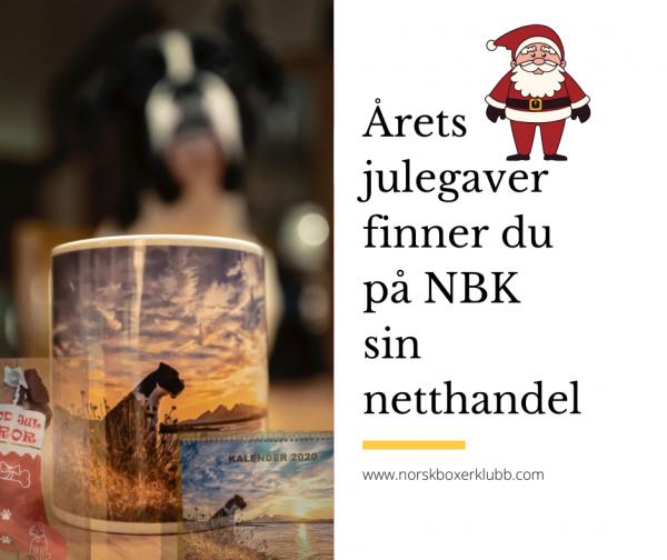 AretsJulegaver2019