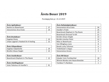 Årets Boxer i forhold til innsendte resultater pr. 31.12.2019