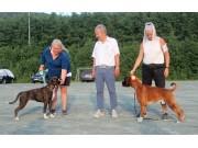 Norsk Boxerklubbs spesialutstilling 26.06.2020 - Presentasjon av vinnerne