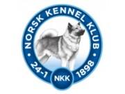 Resultater og Kritikkskjema - Norsk Kennel klub Rogaland 04-05.09.2021