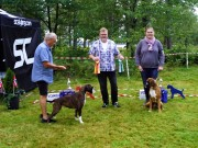 Norsk Boxerklubb Agder sin spesialutstilling 14.08.2021 - Presentasjon av vinnerne